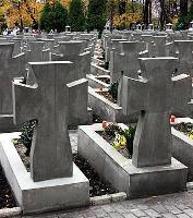 Львівська обласна рада встановить пам'ятні хрести на кладовищах січових стрільців
