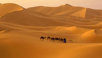 Притча про пустелю